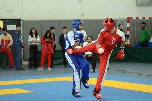 Триумф кикбоксеров Кыргызстана на чемпионате Азии